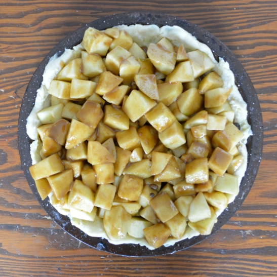 Double-Cheddar Apple Pie   OhMyPotluck.com